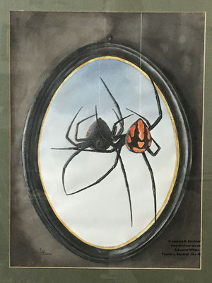 Schwarze Witwe, Tusche u. Aquarell  36 x 48