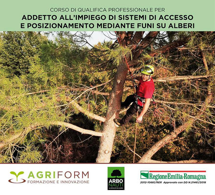 Arbonauti - Locandina corso di Tree climbing