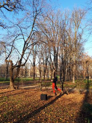 Lancio del sagolino - Marco Montepietra - Parco Ducale Parma