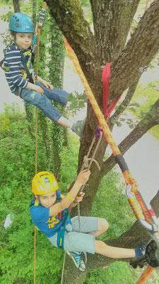 Momento ludico ricreativo sugli alberi