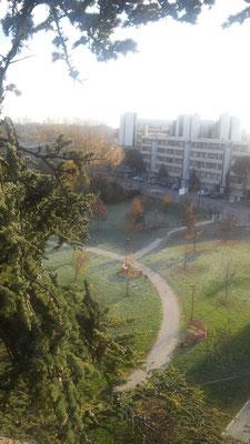 Veduta aerea del Parco Bizzozero a Parma