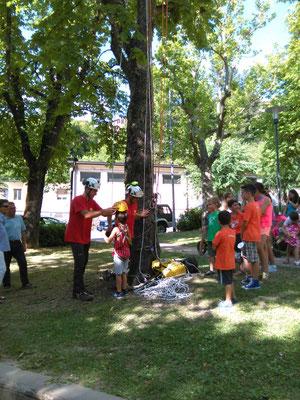 Evento ludico organizzato dagli Arbonauti per avvicinare i bambini agli alberi