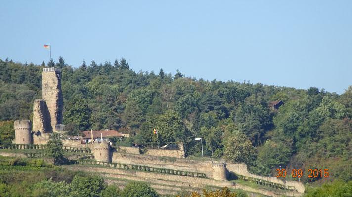 Blick auf die Wachenburg