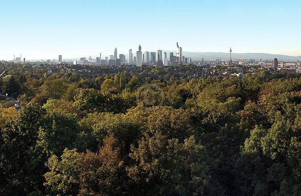 Skyline Frankfurt im Querformat 46