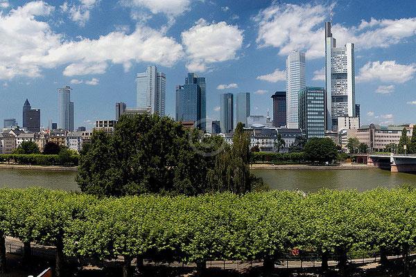 Skyline Frankfurt im Querformat 60