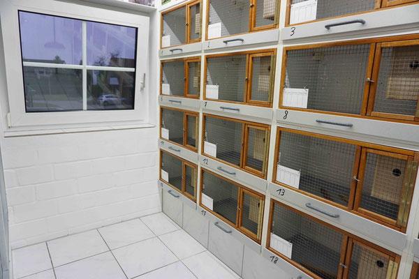 Zwei große Fenster und 300 LEDs sorgen immer für ausreichend Licht im Raum