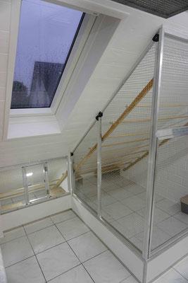 Die neue Absetzbox zusammen mit der neuen Voliere & VELUX Dachfenster
