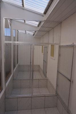 Umbau Außenvoliere - Schritt 6: Vorrichtungen für Türen werden an Wand montiert