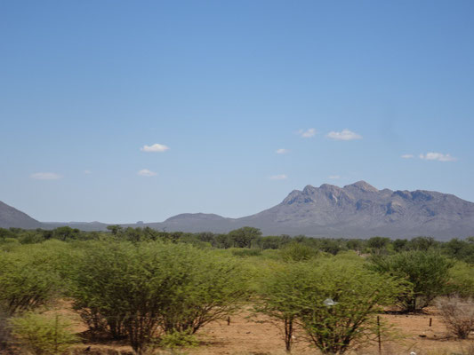 Auf der Fahrt zum Nature Reserve