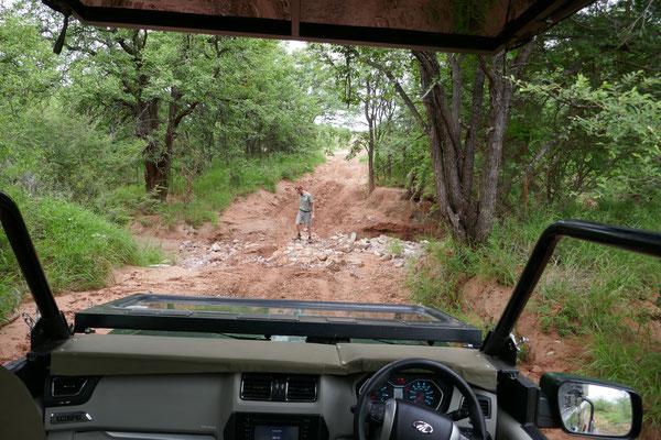 Der Weg bis dahin war etwas steinig, aber wir mußten ja nicht selbst fahren!
