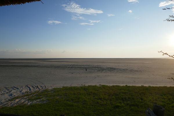 Pan: hier stehen normalerweise ca. 150000 Flamingos. Diesesmal nur Günther!