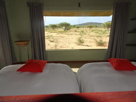 Diese riesige Scheibe direkt vor unseren Betten ist beeindruckend. Der Blick in die Wildnis phantastisch!