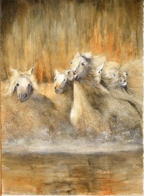 Pferde auf der Flucht