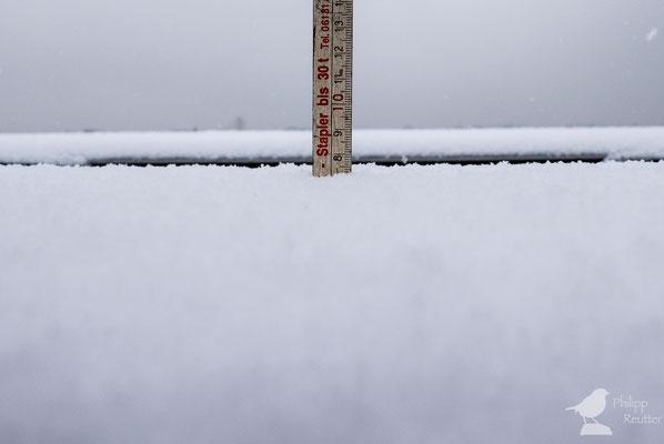 Schneehöhenmessung in Mainz