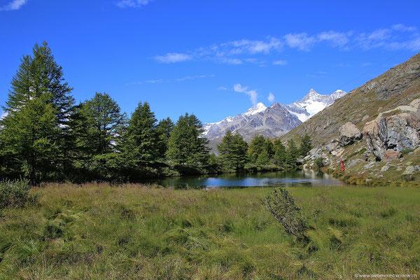 Der Grindijsee ist auf der einen Seite umrahmt von Bäumen, welche sich - wie das Matterhorn - bei windstillen Verhältnissen schön im See spiegeln.