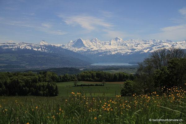 von wo sich wieder ein neuer Blick Richtung Oberland offenbart.