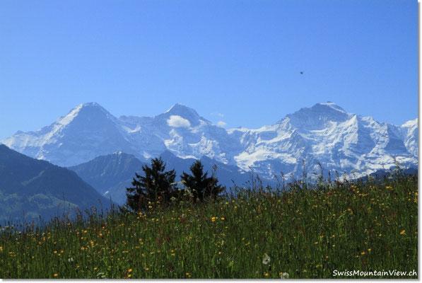 Imposant, wie sich die Schneeberge auf der anderen Talseite erheben