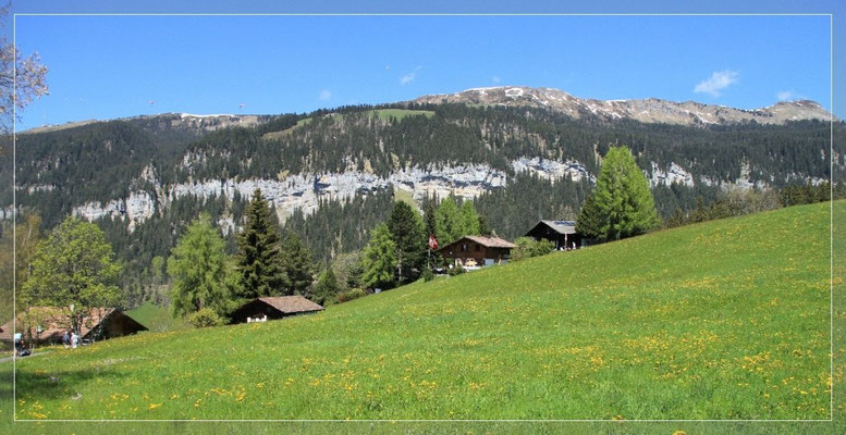 Blick Richtung Niederhorn, im Winter kann man hier toll Skifahren,