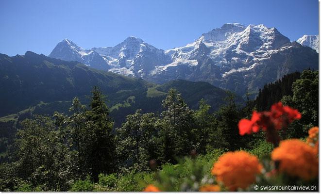 Blick vom Bergrestaurant bei der Grütschalp Richtung Eiger, Mönch und Jungfrau