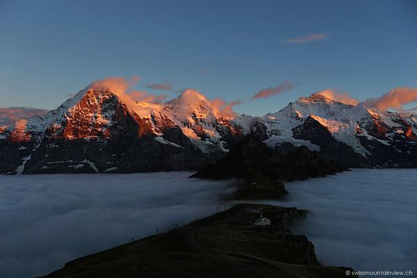 Alpenglühen an Eiger, Mönch und Jungfrau.