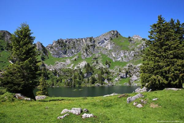 Wir spazieren auf die andere Seite des kleinen Sees