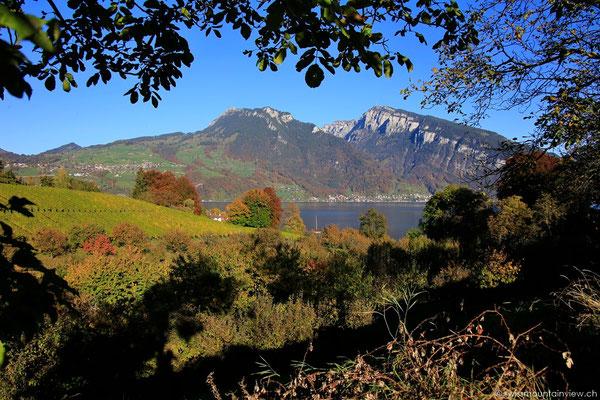 Blick vom Schloss Spiez zum Niederhorn