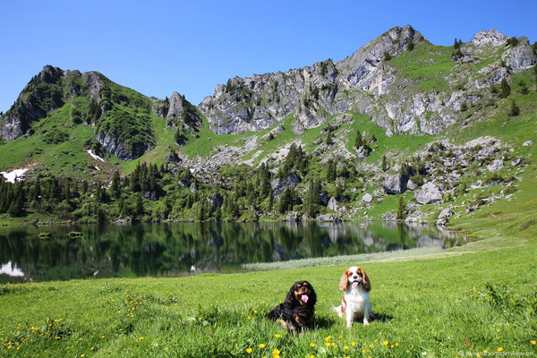Nach rund einer Viertelstunde kommen wir bei diesem wunderschönen Bergsee an.