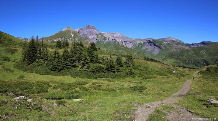 spaziere ich ein Weilchen hinunter Richtung Schwarzwaldalp