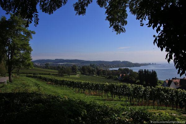 Aussicht von der Wallfahrtskirche Birnau.