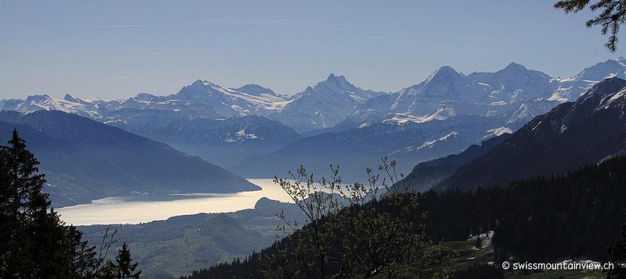 Blick Richtung Berner Oberland, Thunersee, Eiger, Mönch und Jungfrau... noch etwas im Gegenlicht
