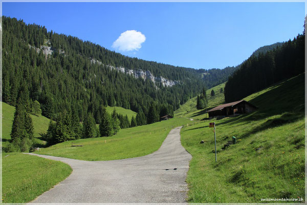 Spazierwege auf der Waldegg