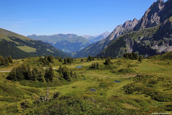 Über's Rosenlauital Richtung Schwarzwaldalp schweifen,