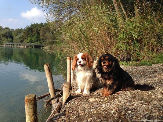 Der Schlosssee Salem liegt nur 2 Fussminuten entfernt.