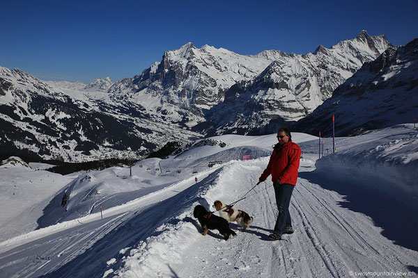 Nach dem Mittagessen im Restaurant auf dem Männlichen wandern wir auf dem Winterwanderweg Richtung Kleine Scheidegg.