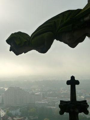er hat freien Blick auf Ulm