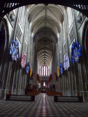 Cathedral Orléans