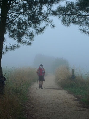Ein Morgen in Galizien