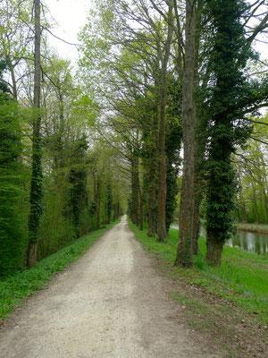 Kanal an der Loire