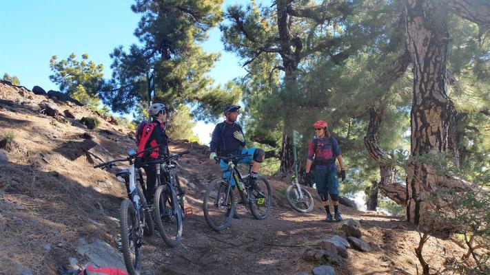 Tour: Pico de las Nieves 2238m NN