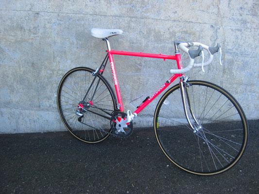 Centurion Professional 1988, Shimano Santé