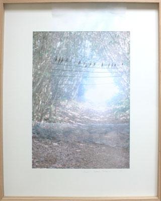 Secret, impression digitale sur papier et voile, 80X100cm