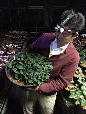 この人、本当に嬉しそうに植物の話してくれます!