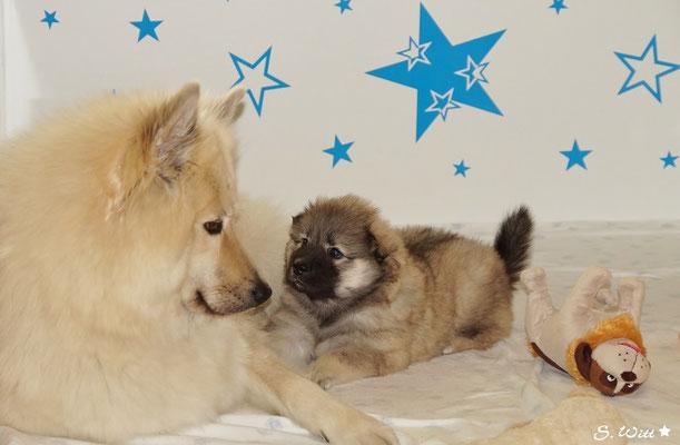 Mama und ihr Baby ♥♥