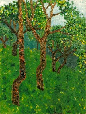 """""""Bäume"""" Öl auf Leinwand, 50x70, 1991 Preis auf Anfrage"""
