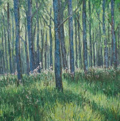 """""""Ungarischer Wald"""" Öl auf Leinwand,  70x70, 2009 verkauft"""