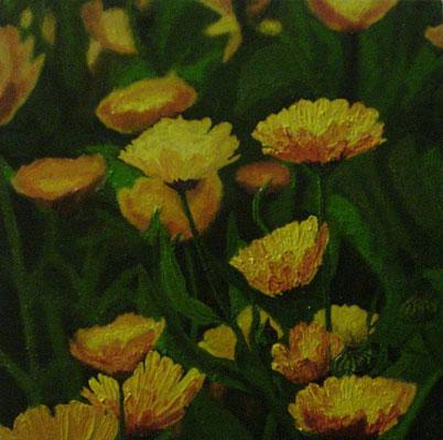 """""""Ringelblume"""" Tempera auf Holzkasten, lackiert, 22x22 verkauft"""