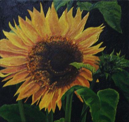 """Sonnenblume"" Tempera auf Holzkasten, lackiert, 22x22 verkauft"