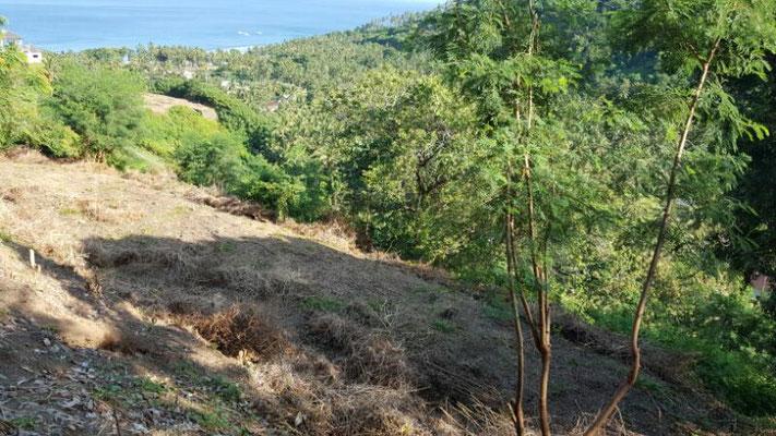 Senggigi land for sale