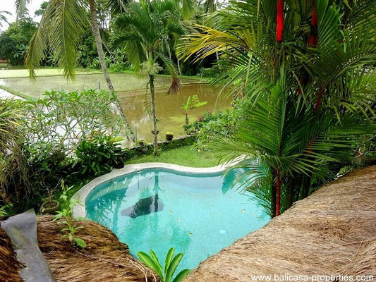 Tegallalang villa for sale. Ubud real estate for sale