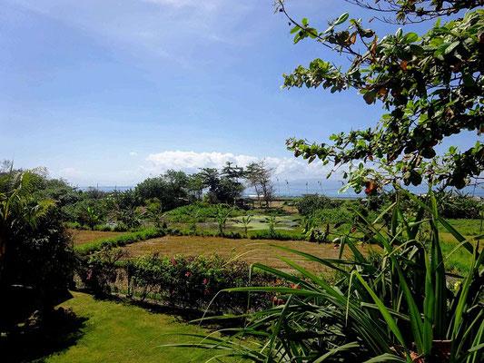 Padang Galak property for sale